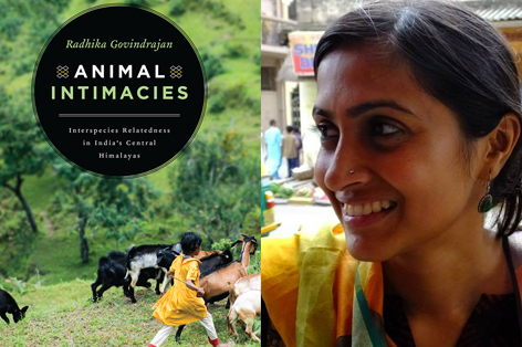 Dr Radhika Govindrajan and the cover of her prize winning book, Animal Intimacies.
